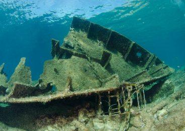 Lokacija: Brod Boka