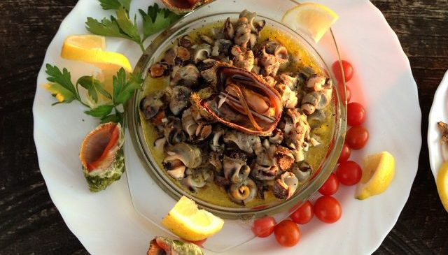 Morski puževi na salatu