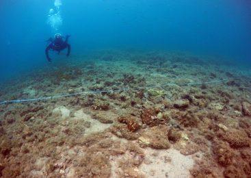 Istraživanje prapovijesnog lokaliteta rt Soline na otoku Korčuli
