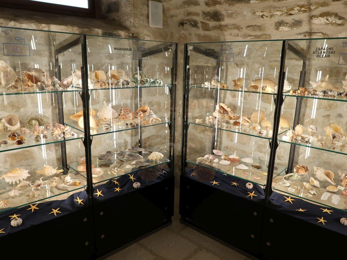 Novo ruho Malakološkog muzeja iz Makarske