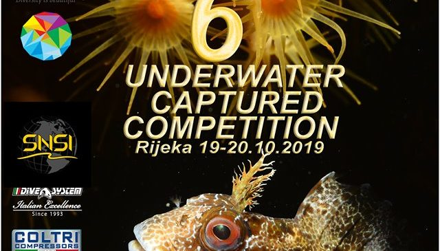 UNDERWATER CAPTURED COMPETITION 19-20.10.2019.
