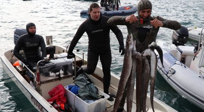 3. Kup Istre u podvodnom ribolovu