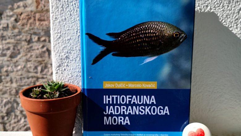 Ihtiofauna Jadranskoga mora