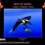 8.Mares UWPM 2020
