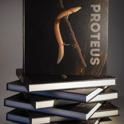 Monografija Proteus