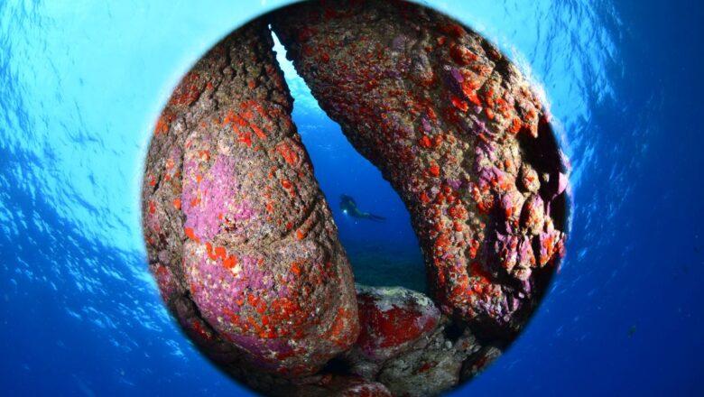 Hrvatska opet ima novi naslov svjetskih prvaka u podvodnoj fotografiji